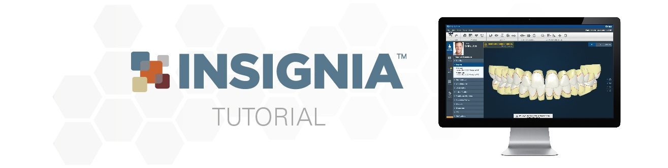 Insignia Approver Introduction Tutorial
